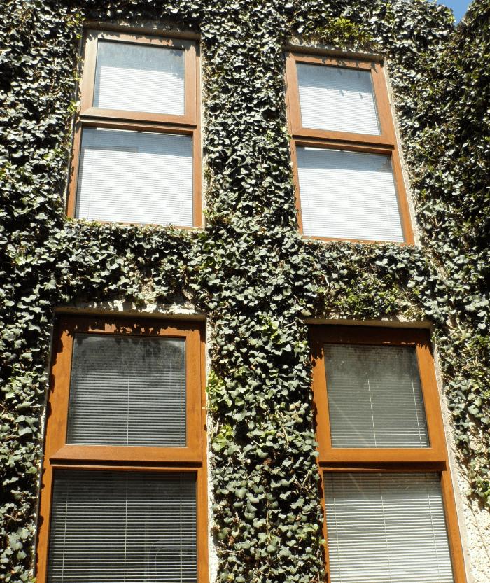 Ventanas de pvc imitaci n madera galer a de ventanas finas - Ventanas pvc imitacion madera ...